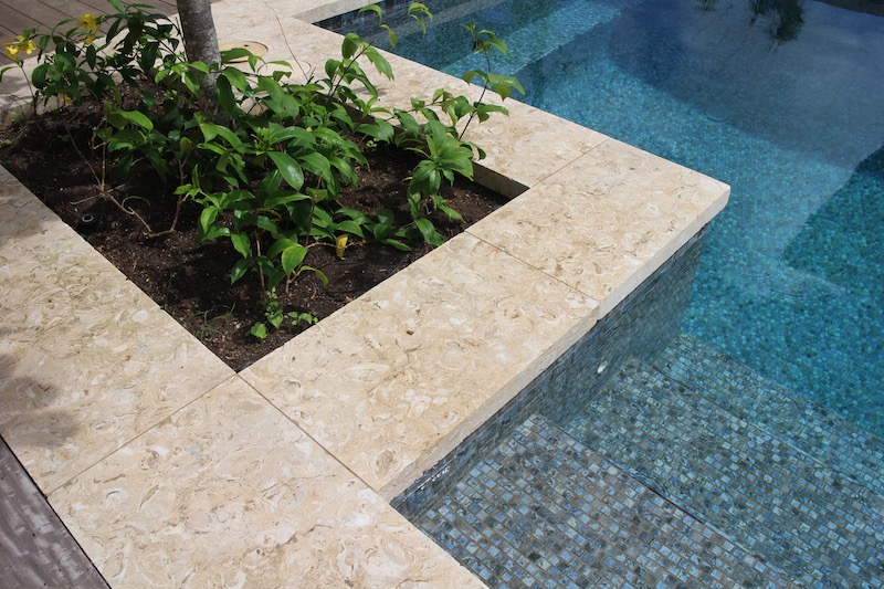Shell stone outdoor natural stone pono stone glass tiles pv shells reef pool solutioingenieria Images